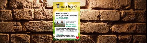 Taller Pau Pamies 1-4 Julio 2_Page_1300P